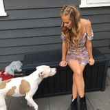 Honest Dog Walker in Vancouver, British Columbia