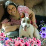 Owner of K9 Nanny..Available for dog walking/pet sitting/basic dog training.