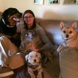 Professional, reliable and compassionate in home pet care
