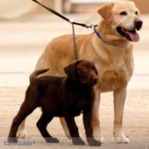 Pet Care Provider Selila Tenenbaum's Profile Picture