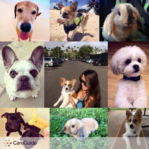 Pet Care Provider Jaici Haanio's Profile Picture