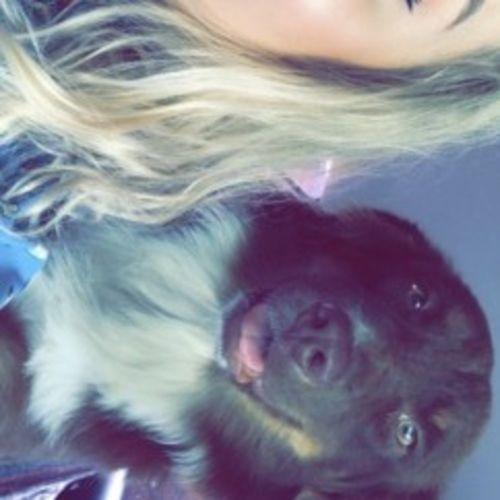 Pet Care Provider Kayli W's Profile Picture