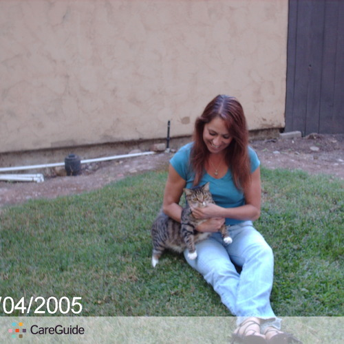 Pet Care Provider Domenica Holbrook's Profile Picture