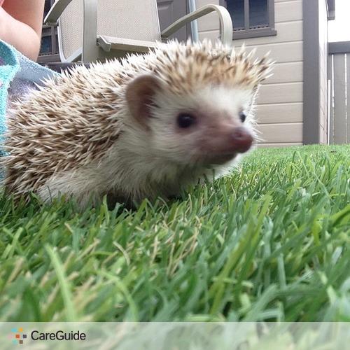 Pet Care Provider Bella Toporowsky's Profile Picture
