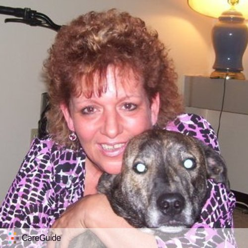 Pet Care Provider Lisa Manolovich's Profile Picture