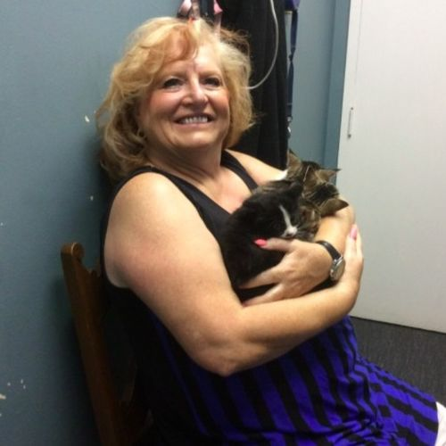 Pet Care Provider Debora Rawding Gallery Image 1