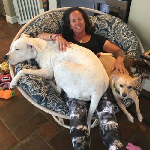 Pet Care Provider Cheri Oehlers's Profile Picture