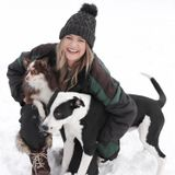 I'm a kind, caring, friendly individual and pet owner. Offering dog walking and pet sitting.