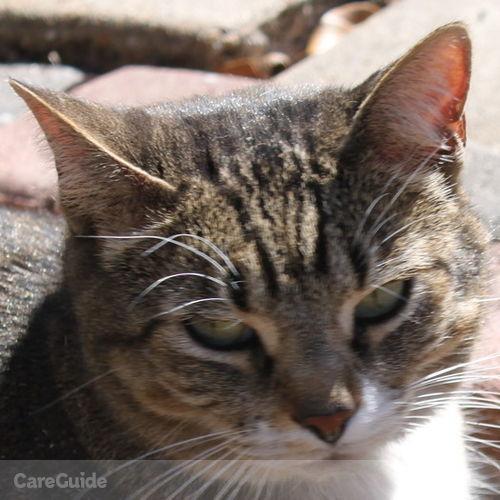 Pet Care Provider Alex Loayza's Profile Picture