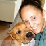 Dog Walker, Pet Sitter in Davie