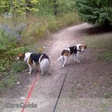 Dog Walker, Pet Sitter in Brampton