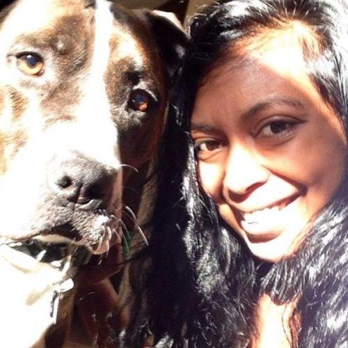 House Sitter Provider Rekha T's Profile Picture