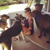 Dog Walker, Pet Sitter in Yorba Linda