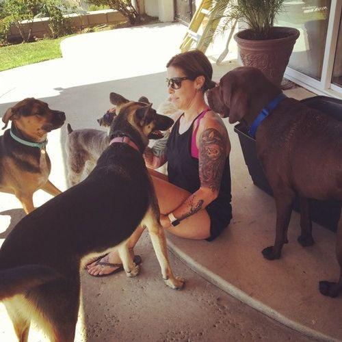 Pet Care Provider Tara Jaime's Profile Picture