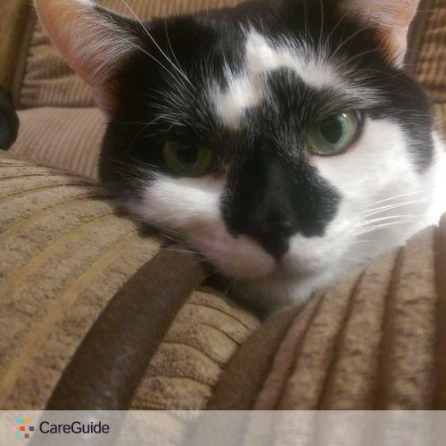 Pet Care Provider George Blystone's Profile Picture