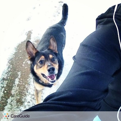 Pet Care Provider Marna TheDogWalker's Profile Picture