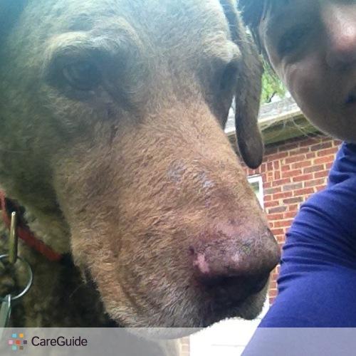 Pet Care Provider Amy Pate's Profile Picture