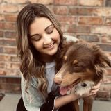 Caring Animal Sitter in Wichita Falls, Texas
