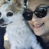 For Hire: Best Reliable and Flexible Pet Adovocate in Chula Vista, California