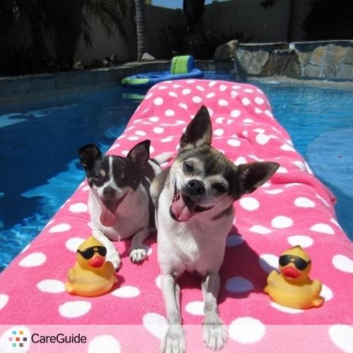 Pet Care Provider Sabrina W's Profile Picture