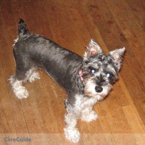 Pet Care Provider Brittany McClain's Profile Picture