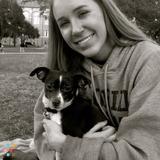 Dog Walker, Pet Sitter in Tallahassee