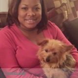 Dog Walker, Pet Sitter in Smyrna