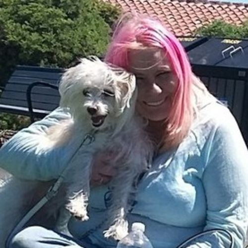 House Sitter Provider Victoria S Gallery Image 2