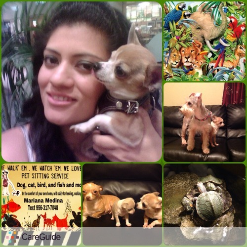 Pet Care Provider Mariana Medina's Profile Picture