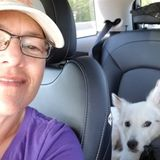 Holistic Pet Sitter Available Immediately