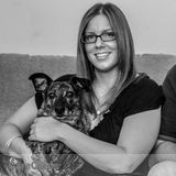 Dog Walker, Pet Sitter in Hamden