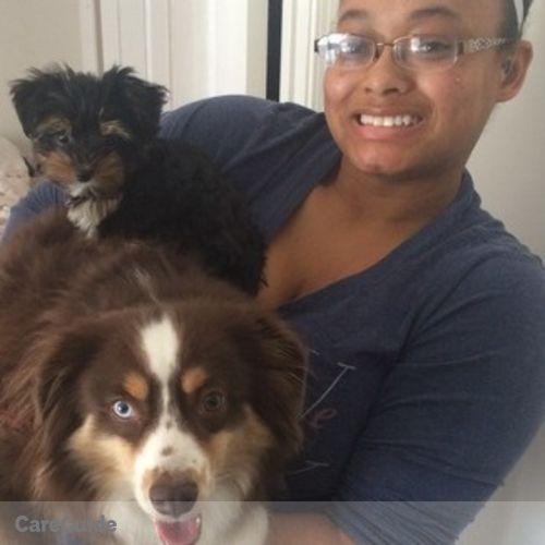 Pet Care Provider Elle M's Profile Picture
