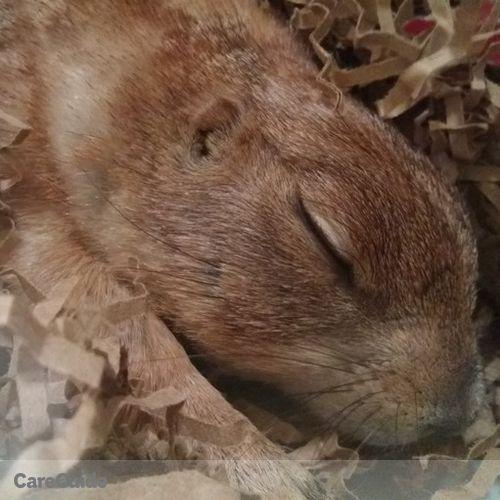 Pet Care Job Bree Gardner's Profile Picture