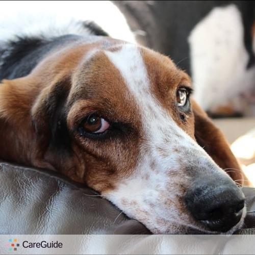 Pet Care Provider Tara Unger's Profile Picture