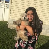 My name is Mayrin Hernandez and i would LOVE to walk and sit dogs. Im offering love to the little guys who dont get it much.