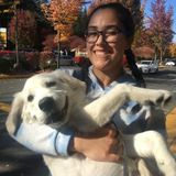 Lynnwood Pet Sitter Looking For Part-Time Job Opportunities