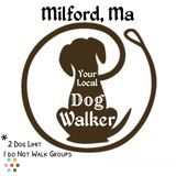 Dog Walker in Milford