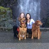 Dog Walker, Pet Sitter in Petaluma