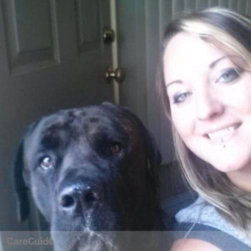 Pet Care Provider Kyla H's Profile Picture