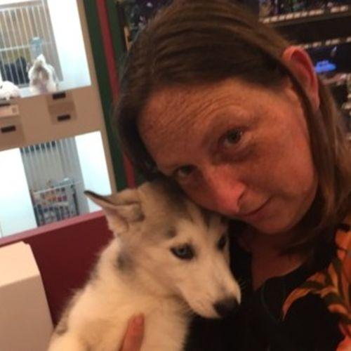 Pet Care Provider Dana Belanger's Profile Picture