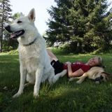 Loving care for your best friend in Gatineau and Ottawa :)