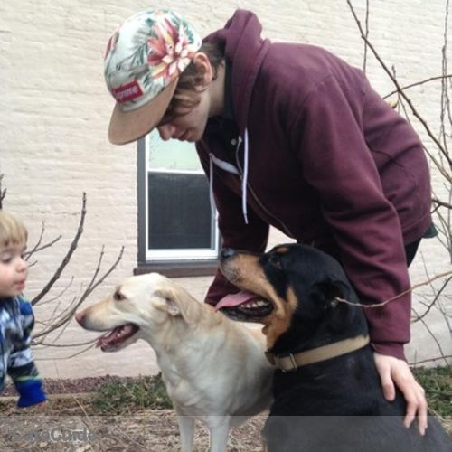 Pet Care Provider Dacota Messer's Profile Picture