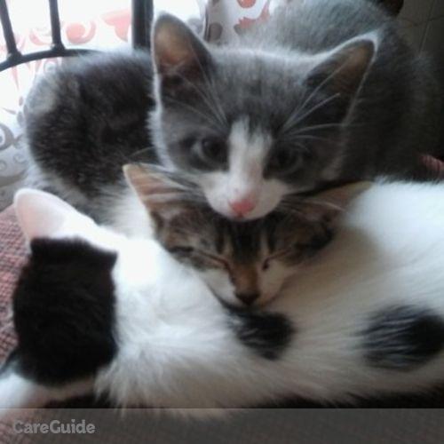 Pet Care Provider Pamela Lamb's Profile Picture