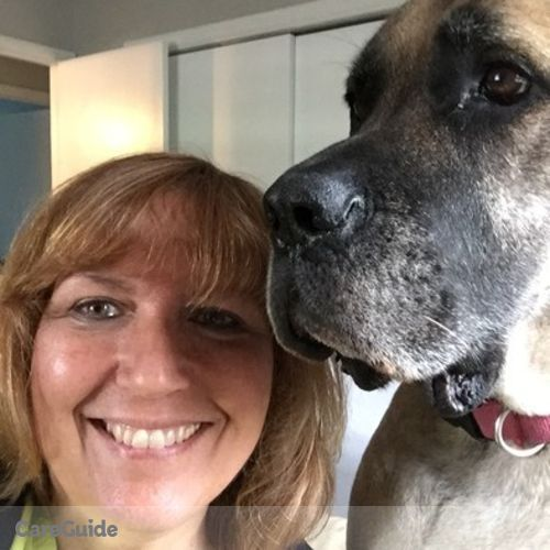 Pet Care Provider Margi Kelly's Profile Picture