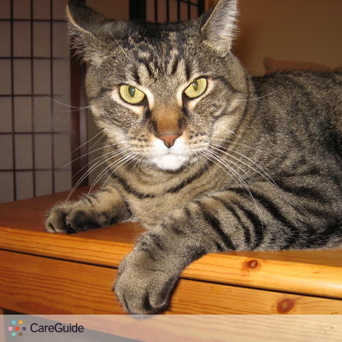 Pet Care Provider Christina V's Profile Picture
