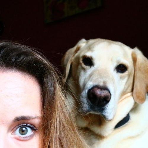 Pet Care Provider Lauren F's Profile Picture
