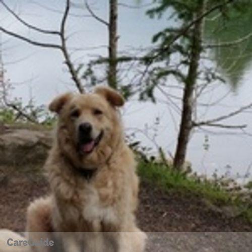 Pet Care Provider Nell Burns's Profile Picture