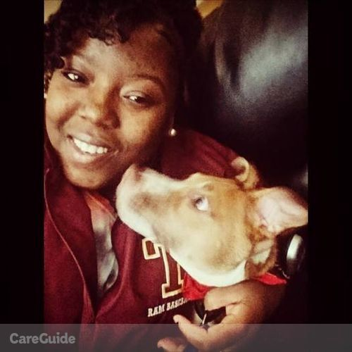 Pet Care Provider India Knowles's Profile Picture