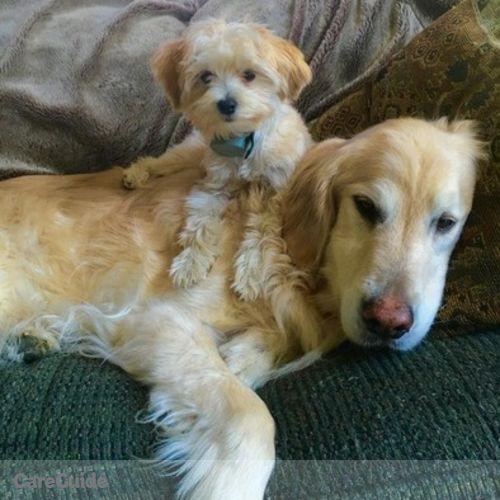 Pet Care Provider Aubrey Hartman's Profile Picture