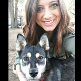 My name is Kelsi and I am looking for House Sitter Opportunities in the area! I am reliable and adore animals!